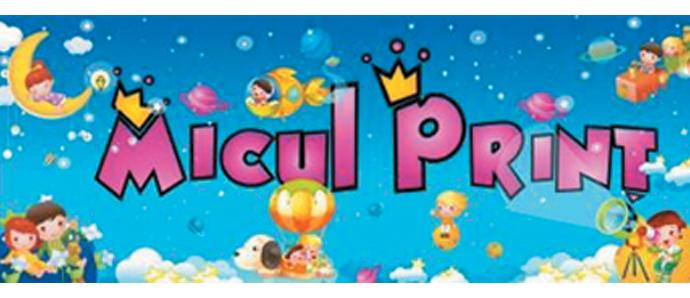 """Grădiniţa cu Program Prelungit """"Micul Prinţ"""""""