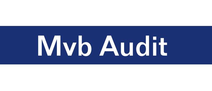 Mvb Audit S.R.L.