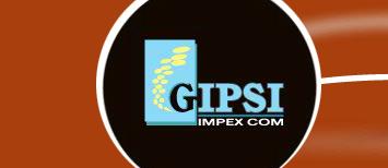 Gipsi Impex
