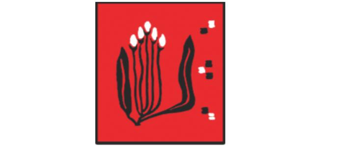 Centrul Județean pentru Conservarea și Promovarea Culturii Tradiționale Dolj