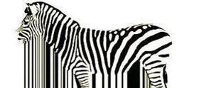 Zebra Caffe & Ristorante