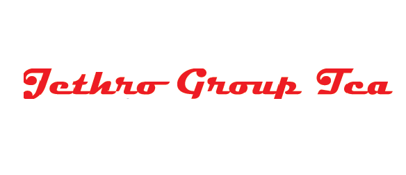 JETHRO GROUP TCA S.R.L.