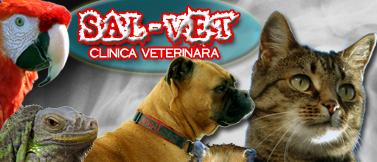 Sal-Vet S.R.L.Timișoara